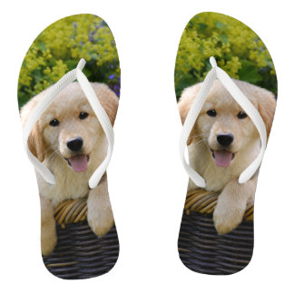 Charming Goldie Retriever Dog Puppy Photo Portrait Thongs