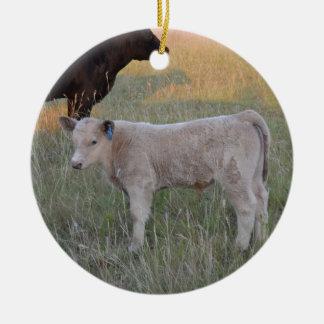 Charolais calf ceramic ornament