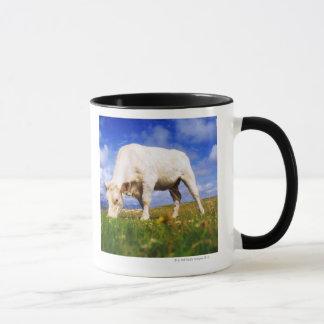 Charolais Cow Grazing, Mannin Bay, Ireland Mug