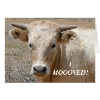 Charolais White Cow - Western Change of Address Card