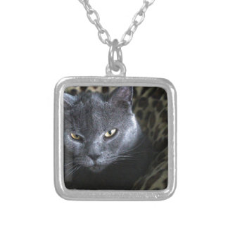 Chartreux  (karthuizer) silver plated necklace