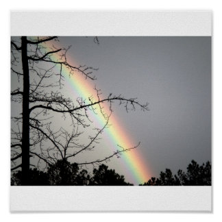 Chasing After Rainbows Poster