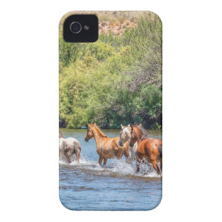 Chasing Freedom iPhone 4 Cases