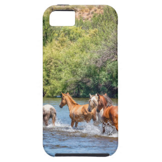 Chasing Freedom iPhone 5 Covers