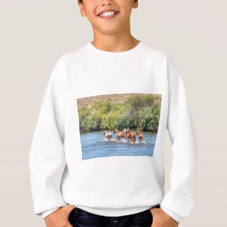 Chasing Freedom Sweatshirt