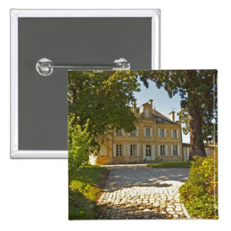 Chateau Cos Labory in Saint St Estephe, wrought 15 Cm Square Badge