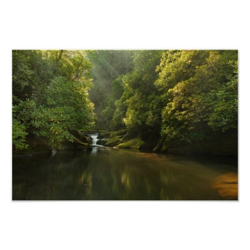 Chattooga River at Dawn Posters