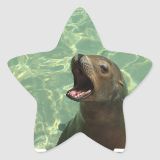 Chatty Sea Lion Sticker