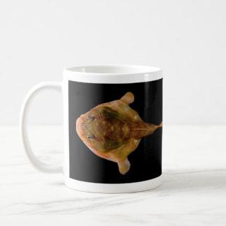Chaunax Stigmaeus Fish Coffee Mug