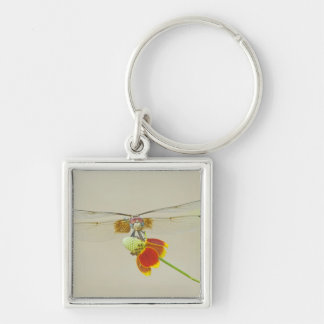Checkered Setwing (Dythemis fugax) on Mexican Silver-Colored Square Key Ring