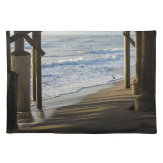 Checking The Shoreline Placemat