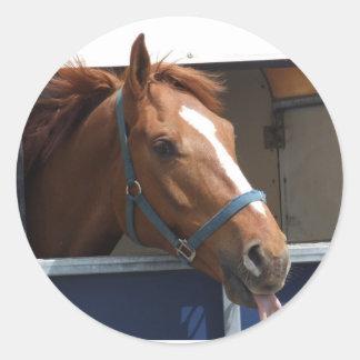 Cheeky Chestnut horse Round Sticker