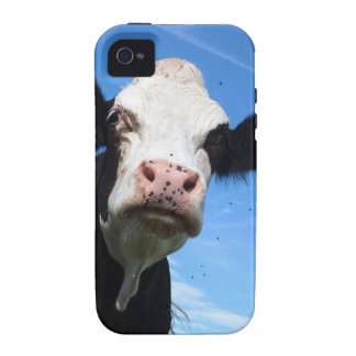 cheeky cow Case-Mate iPhone 4 cases