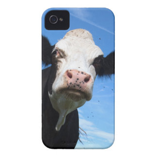 cheeky cow Case-Mate iPhone 4 case