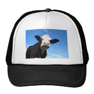 cheeky cow mesh hats