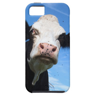 cheeky cow iPhone 5 covers