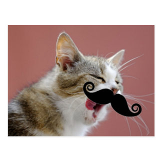 Cheeky Ginger Tabby Cat with Tongue Out & Mustache Postcard