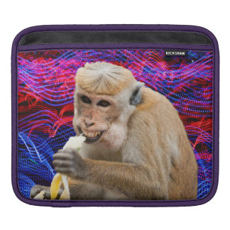 Cheeky monkey Ipad case