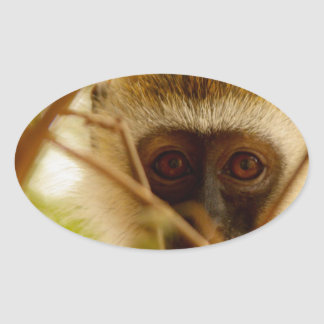 Cheeky Monkey. Oval Sticker