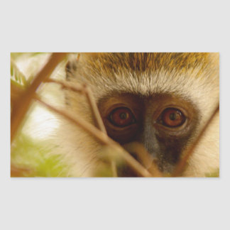 Cheeky Monkey. Rectangular Sticker