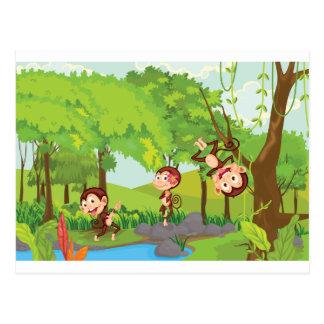 Cheeky monkeys post cards