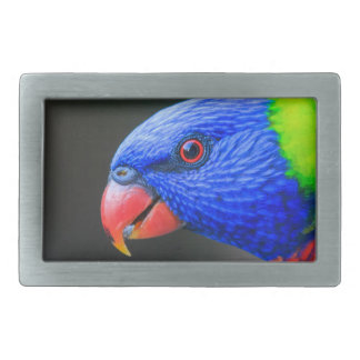 Cheeky-Rainbow-Lorikeet-silkenphotography Rectangular Belt Buckle