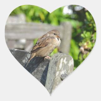 Cheeky Sparrow Heart Sticker