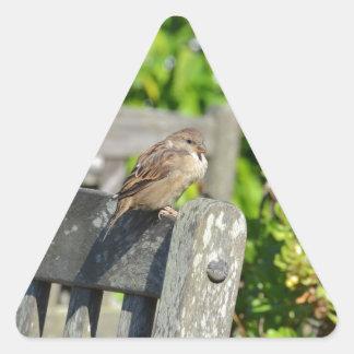 Cheeky Sparrow Triangle Sticker