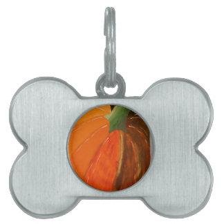 Cheerful Pumpkin Pet Tag
