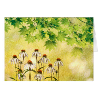 Cheerful white cone flowers card