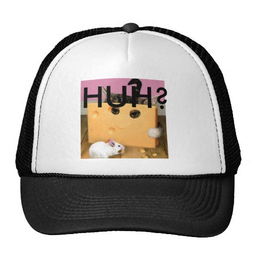 Cheese Cat Hat