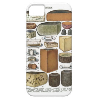 Cheese iPhone 5 Covers