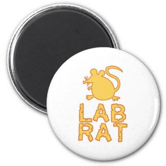 Cheese Lab Rat Refrigerator Magnet