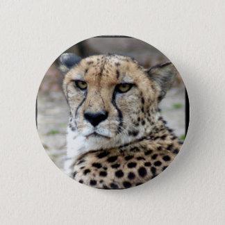 Cheetah-8934e-Bfram 6 Cm Round Badge
