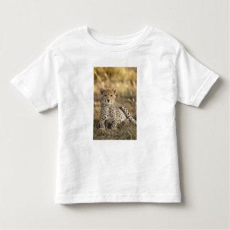 Cheetah, Acinonyx jubatus, cub laying downin Toddler T-Shirt