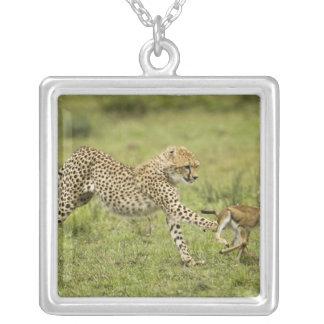 Cheetah, Acinonyx jubatus, cubs hunting and Square Pendant Necklace
