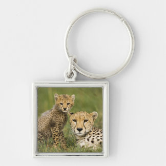 Cheetah, Acinonyx jubatus, with cub in the Silver-Colored Square Key Ring