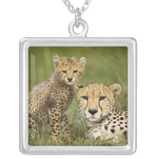 Cheetah, Acinonyx jubatus, with cub in the Square Pendant Necklace