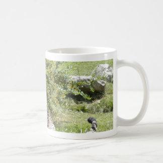 cheetah-b-5 basic white mug