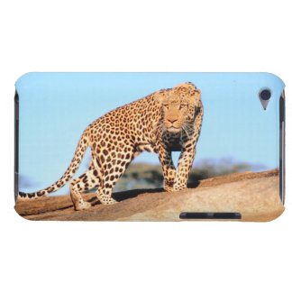 Cheetah Barely There iPod Cases