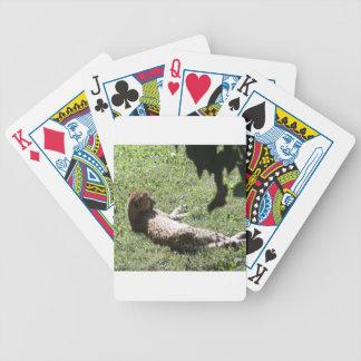 Cheetah Bicycle Playing Cards