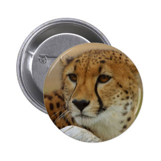 Cheetah Button