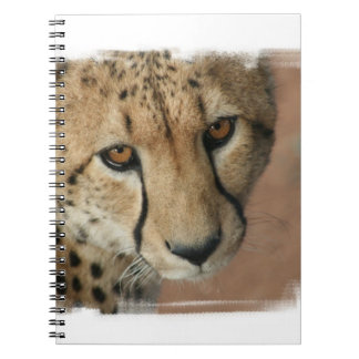 Cheetah Cat  Notebook