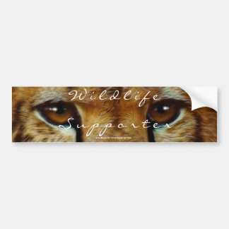 CHEETAH EYES Wildlife Supporter BUMPER STICKER