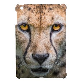 Cheetah Head iPad Mini Cases