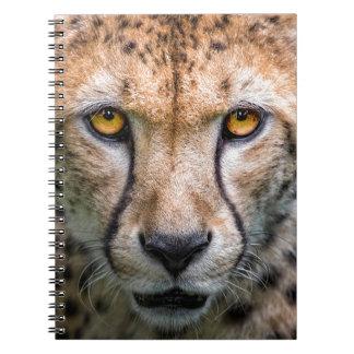 Cheetah Head Spiral Notebook