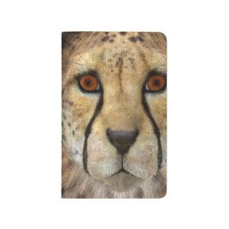 Cheetah Journal