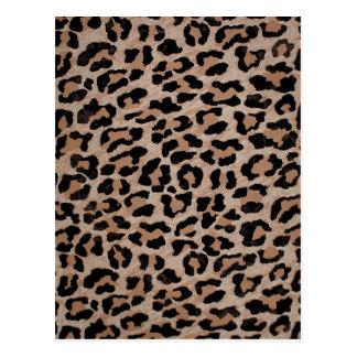 cheetah leopard print postcard