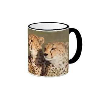 Cheetah Lying In Grass, Ngorongoro Conservation Ringer Mug