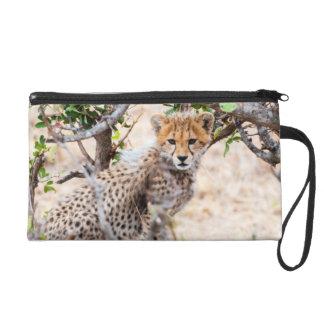 Cheetah, Maasai Mara National Reserve Wristlet